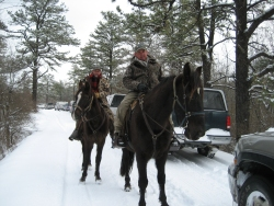 Two Horses on a Trail Ride in the Snow